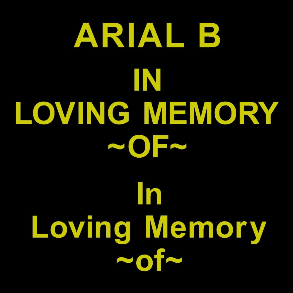 ARIAL B font for grave lettering