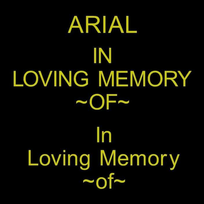 arial font for gravestone lettering